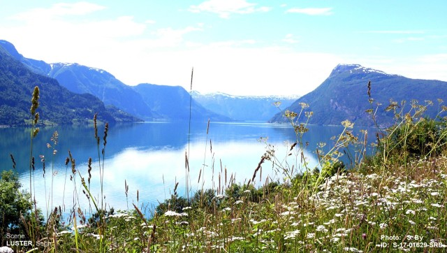 Lusterfjorden, Sogn