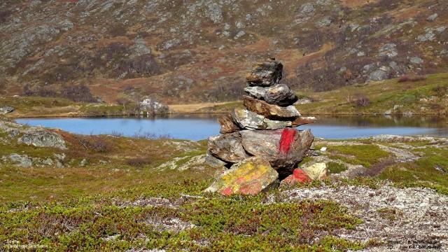 9 b .com  Norway nature-020b