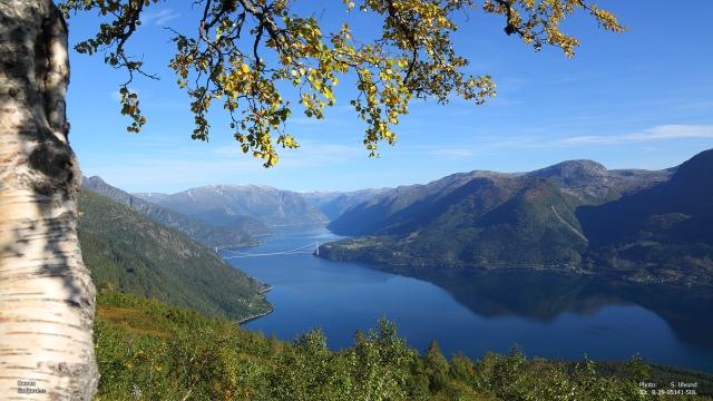 Eidfjorden_1F3A5141